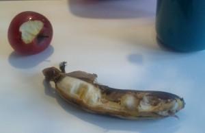 Ida har fundet sig et æble og en lækker banan...med skræl! Mmmmm