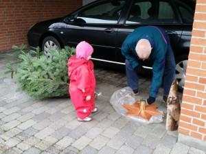 Ida hjalp med at save træet til og sætte foden på