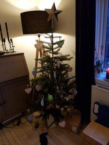 Vores juletræ