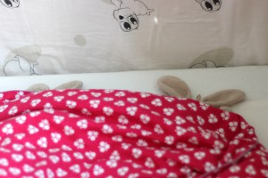 Ida og Mayas Ninuser sover
