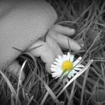 En lille tyk hånd og en lille blomst