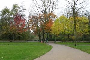 Efterårsfarver i Vondelpark - gotta love it